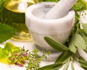 فیلم مستند گیاهان دارویی, خواص درمانی گیاهان دارویی, گیاهان دارویی در سایر کشورها, نظر متخصصان درباره گیاهان دارویی, طب جایگزین, طب سنتی